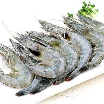 바다마트 태안 흰다리 왕새우500g(18미내외)