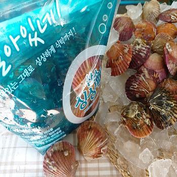 녹동수산 고흥 홍가리비2kg(40~50미내외)
