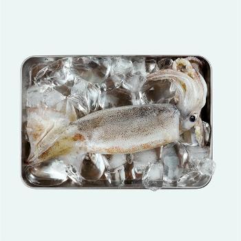 통영사람들 국내산 손질 오징어1kg(4~8미)