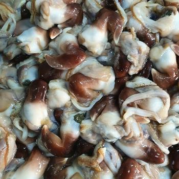 녹동수산 남해안 여수 손질 새조개2kg(실중량500g내외)