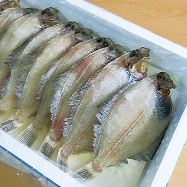 통영해풍 국내산 참가자미1kg(3~4미내외/28cm내외)